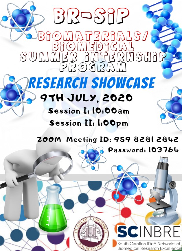 BR-SIP Showcase Invitation 2020